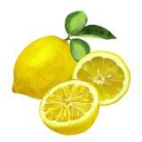 Limón fresco con las hojas y la rebanada del limón Imagen de archivo