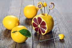 Limón, la mejor vitamina natural Imágenes de archivo libres de regalías