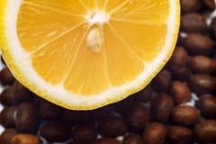 Limón macro de la fotografía Imagen de archivo