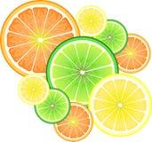 Limón, naranja y cal ilustración del vector