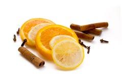 Limón, naranja y cinamomo Fotografía de archivo