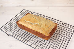 Limón Poppy Seed Bread Fotografía de archivo