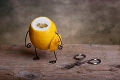 Limón sin cabeza Imagen de archivo libre de regalías