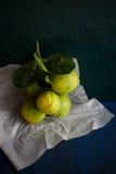 Limón verde Imágenes de archivo libres de regalías