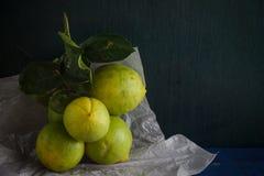 Limón verde Fotos de archivo
