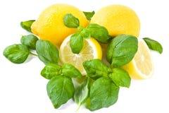 Limón y albahaca imagen de archivo