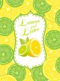 Limón y cal ilustración del vector