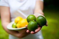 Limón y cal en una placa Imagen de archivo libre de regalías