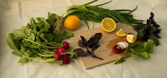 Limón y cebolla Fotografía de archivo libre de regalías