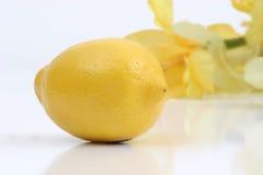 Limón y flor Imágenes de archivo libres de regalías