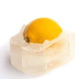 Limón y hielo Imágenes de archivo libres de regalías