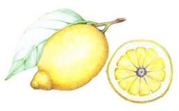 Limón y hoja Foto de archivo
