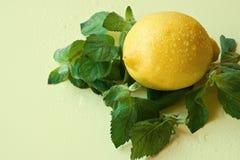 Limón y menta Imagen de archivo