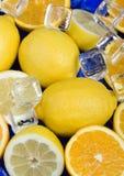 Limón y naranja Fotografía de archivo