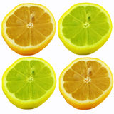 Limões Fotografia de Stock Royalty Free
