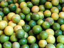 Limões Foto de Stock