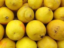 Limões amarelos Imagem de Stock Royalty Free