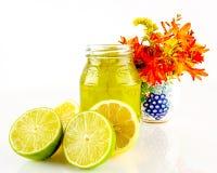 Limões, cais e doce de fruta Foto de Stock Royalty Free