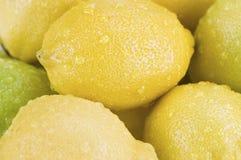 Limões com gotas da água Fotografia de Stock Royalty Free