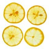 Limões cortados Fotos de Stock Royalty Free