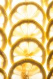 Limões cortados como um fundo Fotografia de Stock