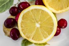 Limões cortados & Cranberrys Fotografia de Stock