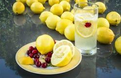Limões & Cranberrys Imagem de Stock Royalty Free