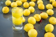 Limões & Cranberrys Fotos de Stock