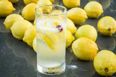 Limões & Cranberrys Imagem de Stock