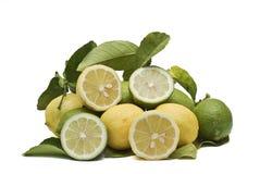 Limões e cais frescos. Imagens de Stock Royalty Free