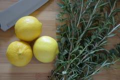 Limões e ervas Fotografia de Stock Royalty Free
