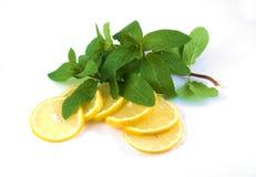 Limões e ervas Imagem de Stock Royalty Free