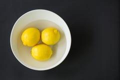 Limões em uma bacia Fotografia de Stock