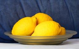 Limões em uma bacia Imagens de Stock