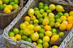 Limões em uma cesta Fotos de Stock