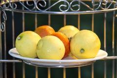 Limões em uma placa branca Foto de Stock Royalty Free