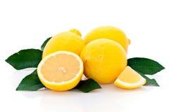 Limões frescos Imagens de Stock