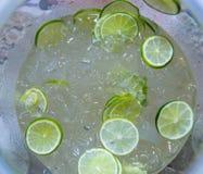 Limões frescos com gelo Imagens de Stock Royalty Free