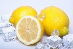 Limões gelados fotografia de stock royalty free