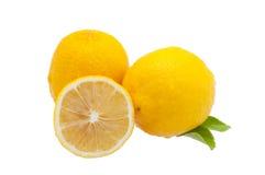 Limões isolados no branco Fotografia de Stock