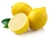 Limões isolados no fundo branco imagem de stock royalty free