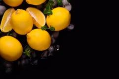 Limões isolados no fundo preto Vista superior Fotografia de Stock