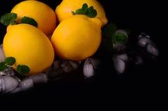 Limões isolados no fundo preto Vista superior Fotos de Stock Royalty Free