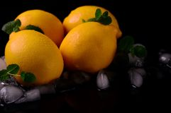 Limões isolados no fundo preto Vista superior Fotos de Stock
