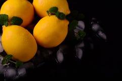 Limões isolados no fundo preto Vista superior Imagens de Stock Royalty Free