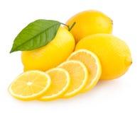 Limões maduros Fotografia de Stock Royalty Free