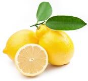 Limões maduros da foto de alta qualidade Imagem de Stock Royalty Free