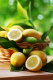 Limões maduros frescos na cesta fotografia de stock