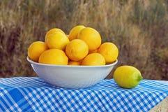 Limões na bacia Fotografia de Stock Royalty Free