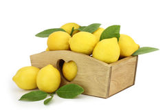 Limões na caixa Fotografia de Stock Royalty Free